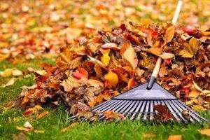 Fall Away from Summer Clutter