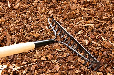 New Mulch - Home Improvement Tips
